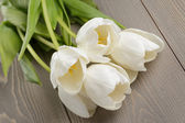 White tulips on old wood table — Stock Photo