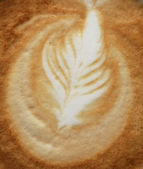 Close up of simple rosetta — Stock Photo