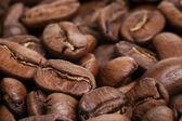 Big arabica coffee beans background — Stock Photo