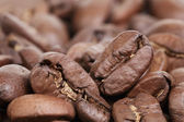 Big arabica coffee beans background — Stock Photo