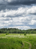 Russian countryside landskape with cloudy sky — Stock Photo