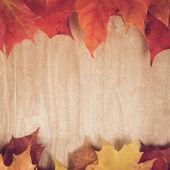 Autumn klonowe listowie na stół z drewna — Zdjęcie stockowe