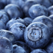 Freshly washed blueberries close up photo — Stock Photo #49780427
