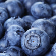 Freshly washed blueberries close up photo — Stock Photo #49780431
