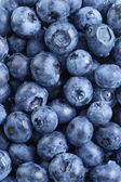 Fresh washed blueberries from above — Stock Photo
