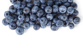 Border from ripe washed blueberries — Stock Photo