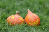 Funny halloween pumkins on grass — Stock Photo