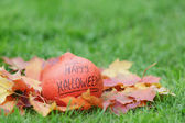 Halloween pumkin on grass — Stock Photo