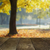 Template from oak surface and natural blured background — Stock Photo