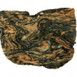 Folded migmatite — Stock Photo
