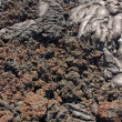 Transition from smooth pahoehoe to rubbly alava — Stock Photo #26792465