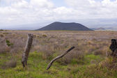 Cinder cone in Hawaii — Stock Photo