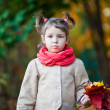 Adoradle toddler girl in the park. Fall time. — Stock Photo