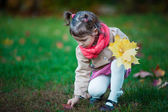 Toddler girl pick up leaves in the park — Stock Photo