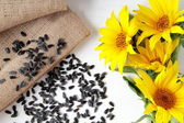 Sunflower seed on wood table white — Stock Photo