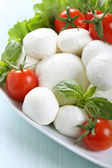 Mozzarella salad with basil and tomatoes — Stock Photo