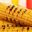 Grilled corn on the cob - Foto Stock