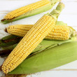 Close up corn cob — Stock Photo #28567261