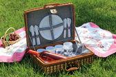 Pic nic wicker basket on green garden — Stock Photo