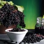 Elderberry sambucus green background — Stock Photo #31352313