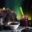 Elderberry sambucus green background — Stock Photo