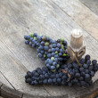 Grapes on top of a wooden barrel — Stock Photo