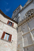 Cathedral of St. Ruffino-1 — Stock Photo