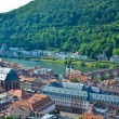Heidelberg, panoramic view  5 - Stock Photo