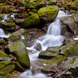 Vallombrosa forest, waterfall 2 — Stock Photo