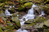 Vallombrosa forest, waterfall 2 — Stock Photo