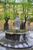 Fountain of Death, Viterbo — Photo