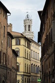 Suggestive street of Siena — Stock Photo