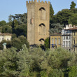 Stock Photo: Tower St. Niccolo, Florence 7