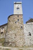 Burg von Ljubljana, Slowenien 4 — Stockfoto