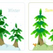 Royalty-Free Stock Vector Image: Fir tree in summer and winter