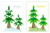 Fir tree in summer and winter — Stock Vector