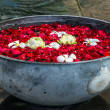 Stock Photo: Rose petals, lotos and plumeriflowers in bowl
