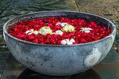 ボウルの lotos とプルメリアの花、バラの花びら — ストック写真