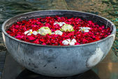 Rose petals, lotos ans plumeria flowers in the bowl — Stock Photo