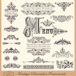 Vector set of Vintage Ornaments and Design Elements — Stock Vector #12877257