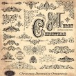 Vector set of Vintage Ornaments and Design Elements — Cтоковый вектор