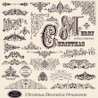 Vector set of Vintage Ornaments and Design Elements — Stok Vektör