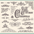 Vector set of Vintage Ornaments and Design Elements - Stock Vector