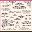 Vector set of Vintage Ornaments and Design Elements — Stock Vector #13624799