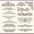 Vector set of Vintage Ornaments and Design Elements — Stock Vector #13624808