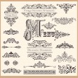 Vector set of Vintage Ornaments and Design Elements — Stock Vector #13624819