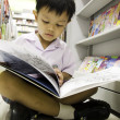 Child reading a book. — ストック写真 #26941223
