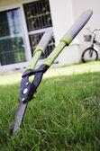 Scissors to cut the grass. — Stock Photo