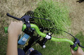Handicap-fahrrad. — Stockfoto