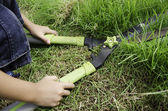 Scissors to cut the grass. — Stock Photo